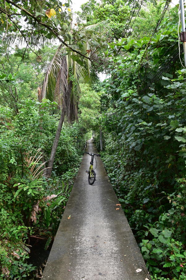 Fietsweg in Klap Kachao stock afbeelding