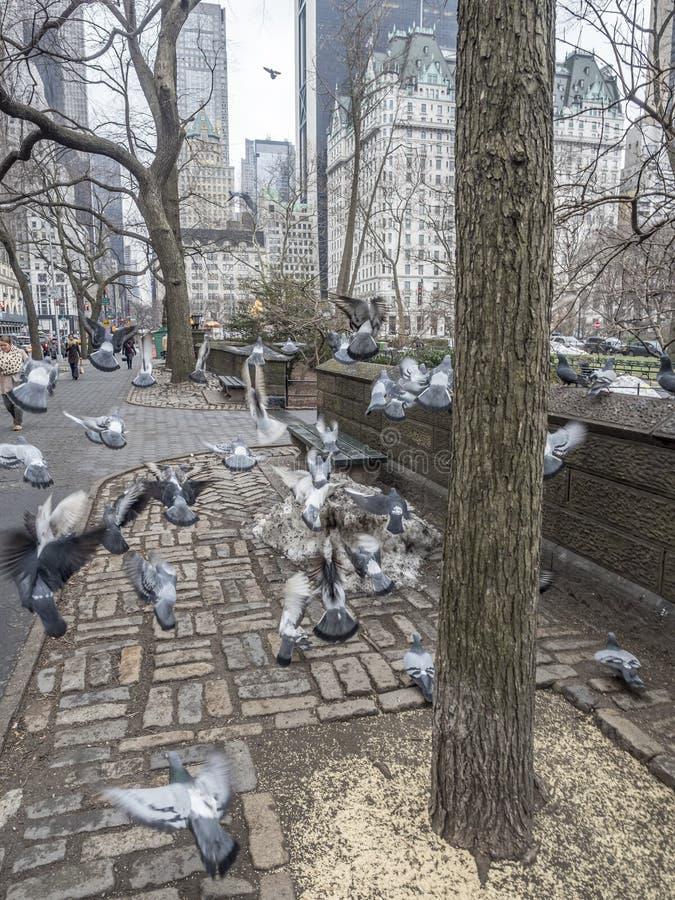 Fifth Avenue New York City Manhattan fotografering för bildbyråer