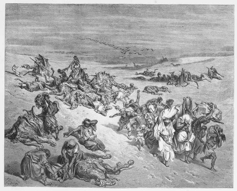 The Fifth Plague. Picture from The Holy Scriptures, Old and New Testaments books collection published in 1885, Stuttgart-Germany. Drawings by Gustave Dore