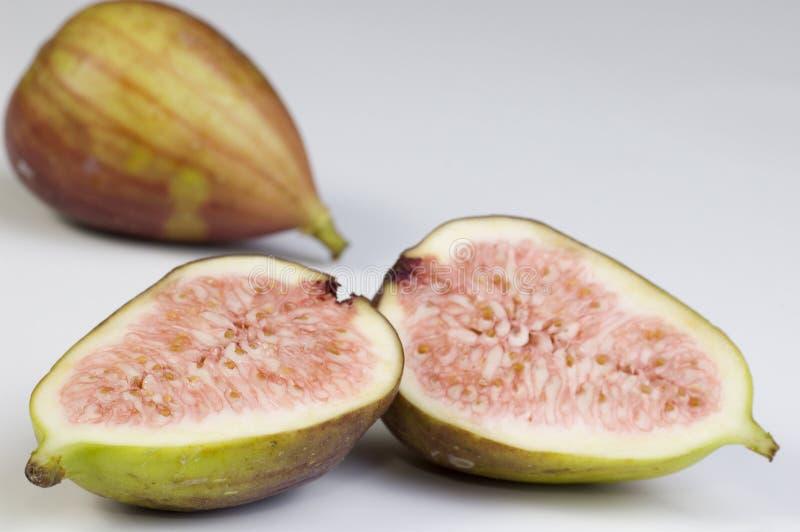 Fig. lizenzfreie stockfotografie