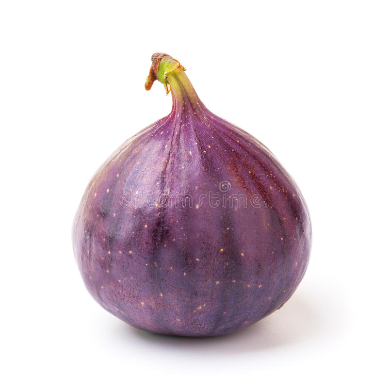 Free Fig Stock Images - 29960754