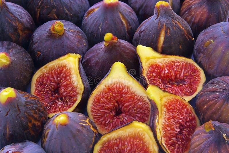 Fig stock photo
