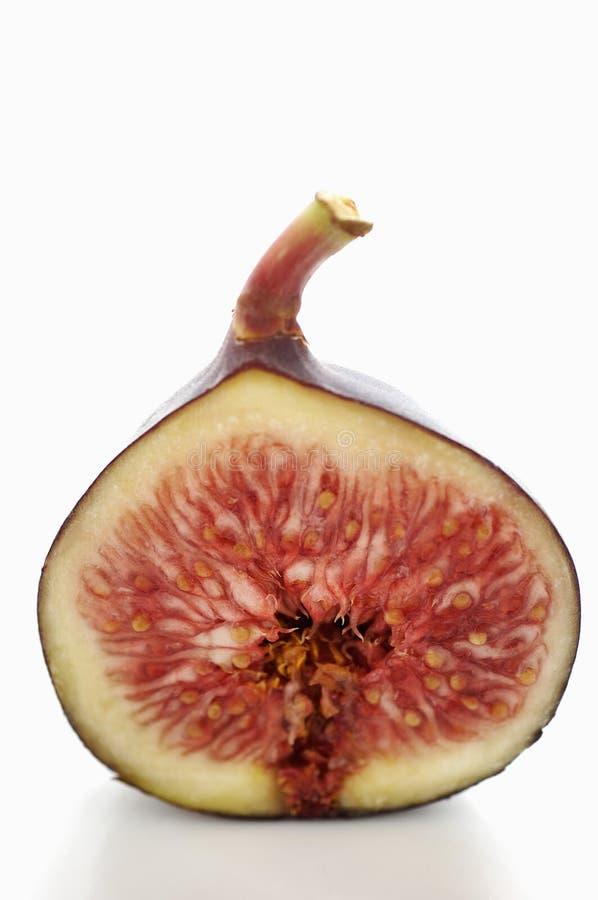 Download Fig cut in half stock image. Image of half, color, fruit - 23704941
