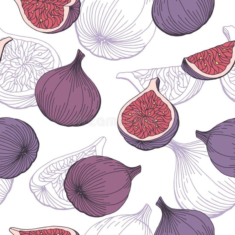 Fig fruit graphic color seamless pattern sketch illustration. Vector stock illustration