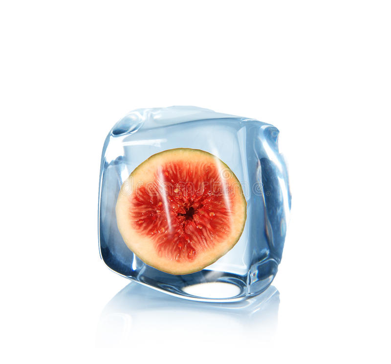 Fig in Ice cube. Over white royalty free stock photo