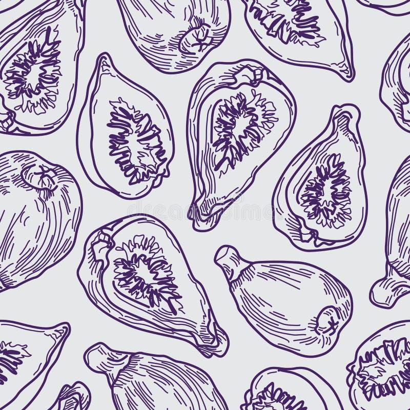 Figa Kreskowego rysunku Purpurowy Bezszwowy wzór na Popielatym tle ilustracji