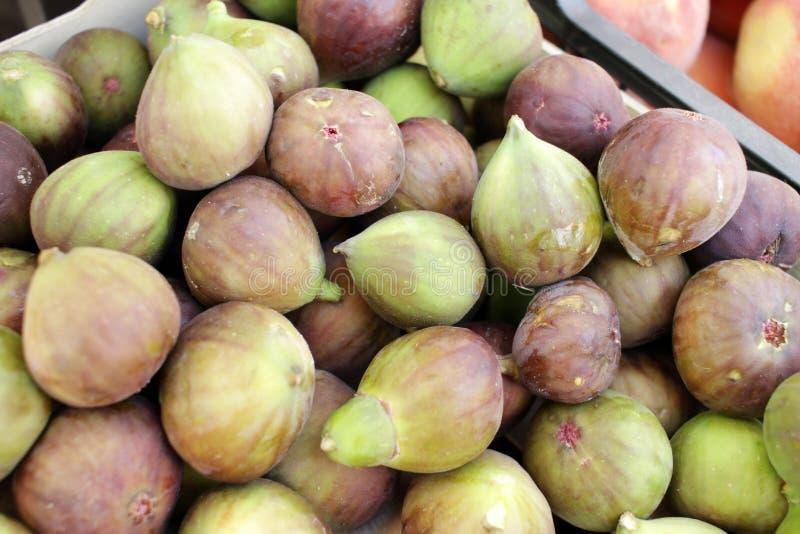figaro Ώριμα σύκα Οργανικά φρούτα στοκ φωτογραφία