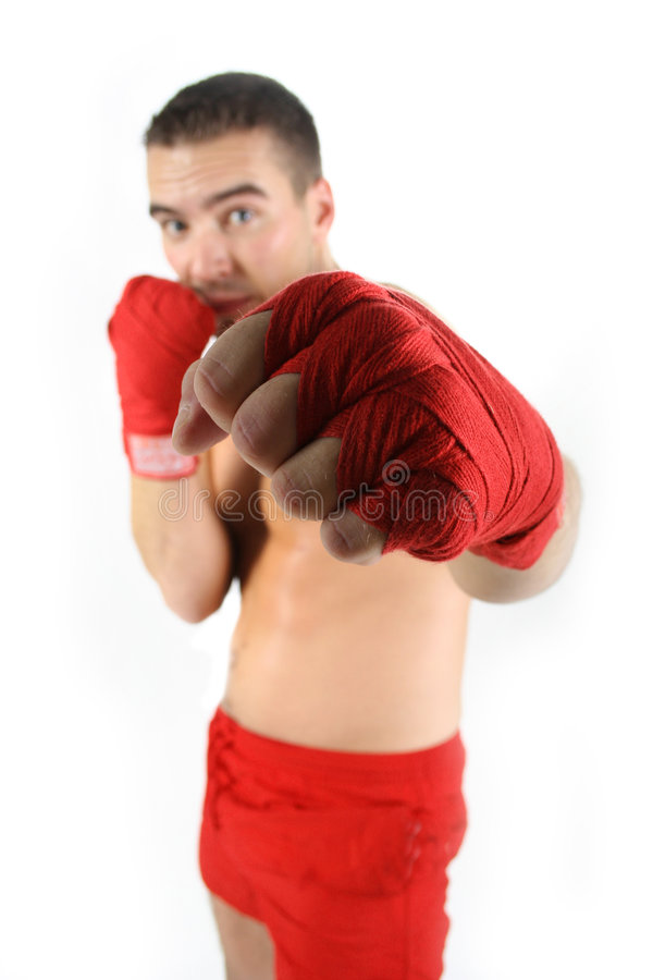 Fight Royalty Free Stock Photos