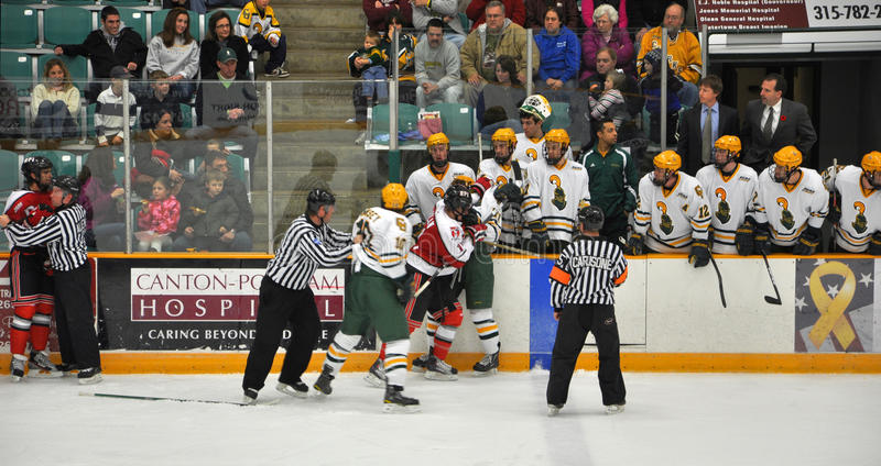 Fight in a NCAA Hockey Game