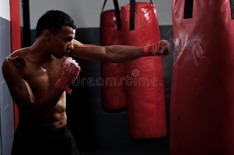 Fight training royalty free stock photo