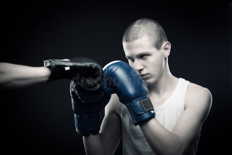 Download Fighter stock photo. Image of champion, sport, strength - 24824622