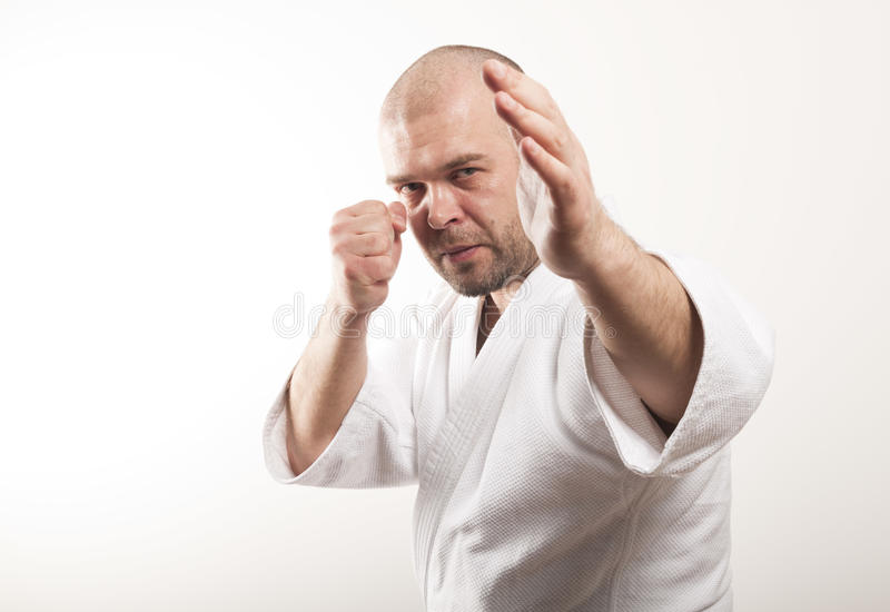 Fighter. Martial arts. Fighter on a light background stock photos