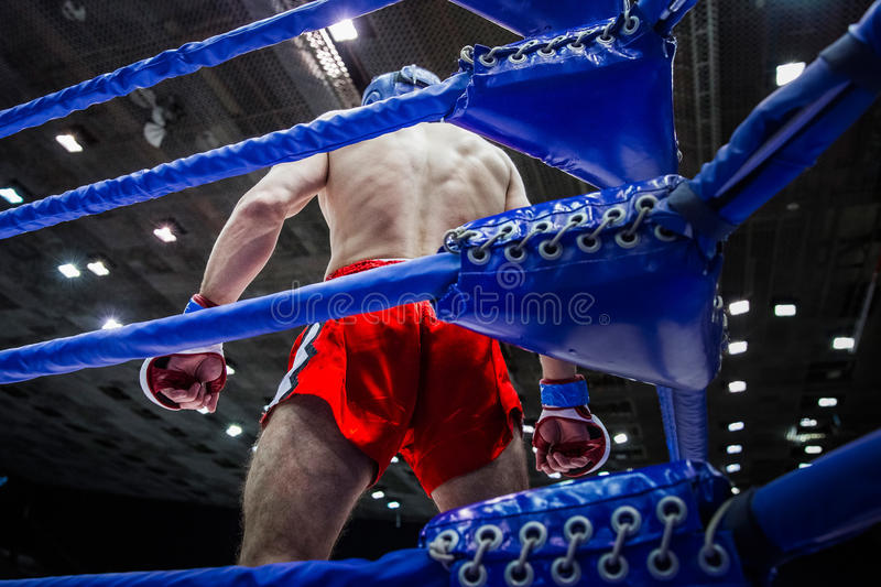 Fighter boxer in corner of ring. Before fight on competitions in mixed fighting single combats stock images