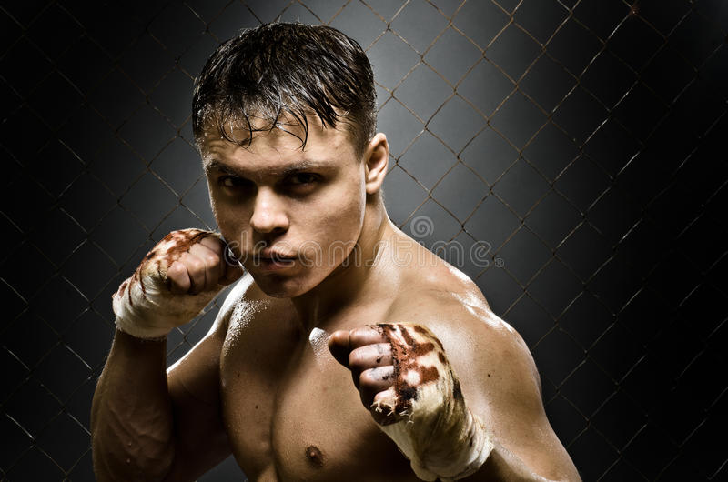 Fighter stock image