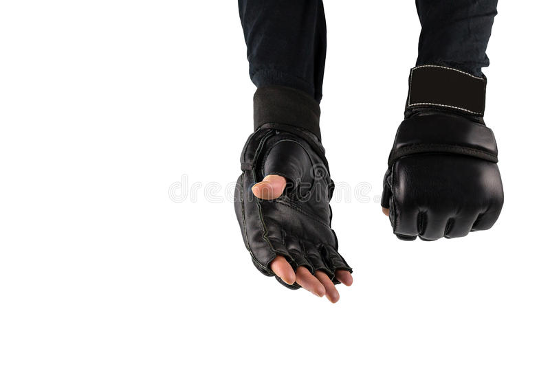 Fighters hand in gloves for martial arts stock photo image of download fighters hand in gloves for martial arts stock photo image of champions shot m4hsunfo
