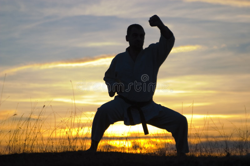 Download Fighter silhouette stock image. Image of arts, exercise - 4900591