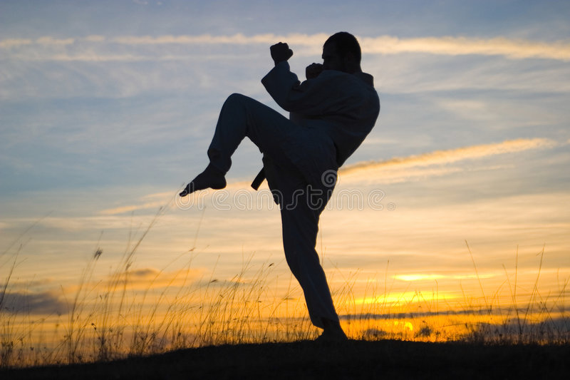 Download Fighter silhouette stock image. Image of dramatic, exercising - 4900623