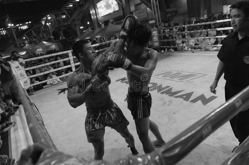 Download Fighters Compete In A Thai Boxing Match Editorial Photography - Image: 23830602