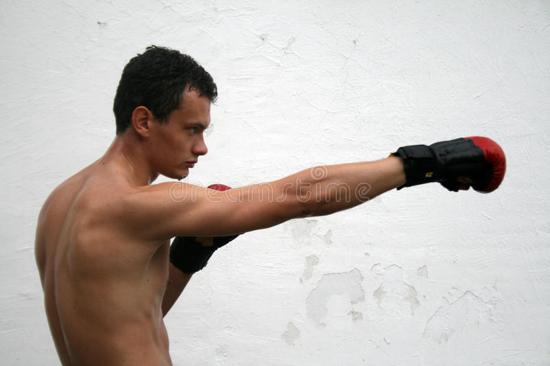 Fighting boxing man. Practicing his skills royalty free stock photography
