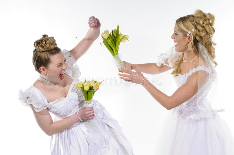 Fighting brides royalty free stock photo
