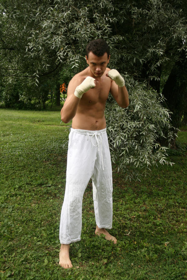Download Fighting Man Practicing His Skills Outdoor Stock Photography - Image: 10570032