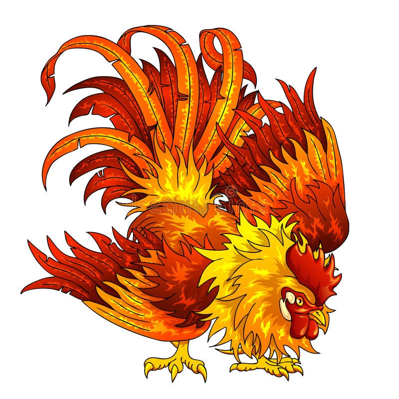 Fighting orange-red rooster on white vector illustration