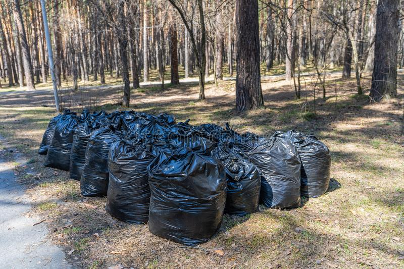 Fighting rubbish is a worldwide problem. Where to put these garbage bags now.  royalty free stock images