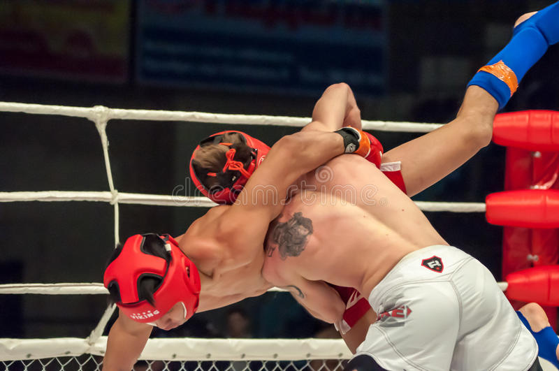 Fights without rules or MMA. Orenburg, Russia - 21.02.2015: Fight in mixed martial arts fighters on the open cup of Orenburg region mixed martial art (MMA) or royalty free stock images