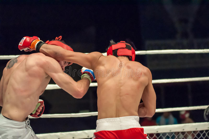 Fights without rules or MMA. Orenburg, Russia - 21.02.2015: Fight in mixed martial arts fighters on the open cup of Orenburg region mixed martial art (MMA) or stock images