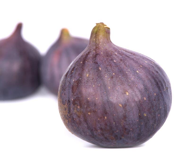Figi na bielu zdjęcia stock