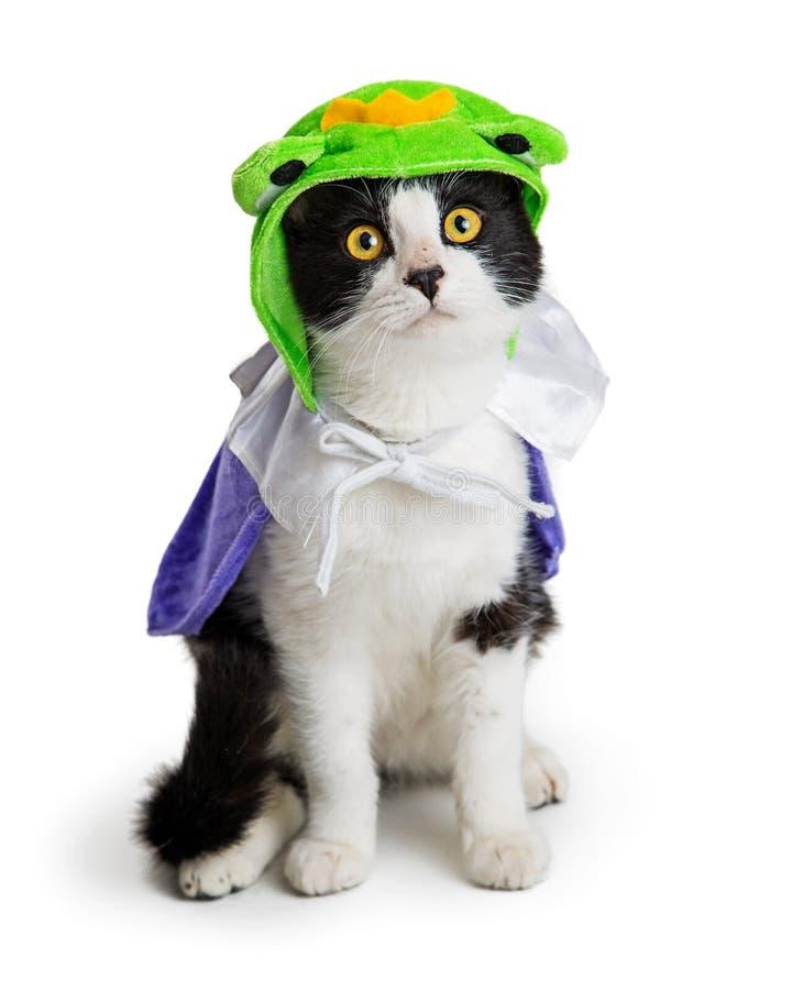 Figlarka Jest ubranym Halloweenowego żaby książe kostium fotografia royalty free