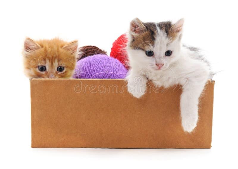 Figlarki i kolorowe piłki w pudełku obrazy stock