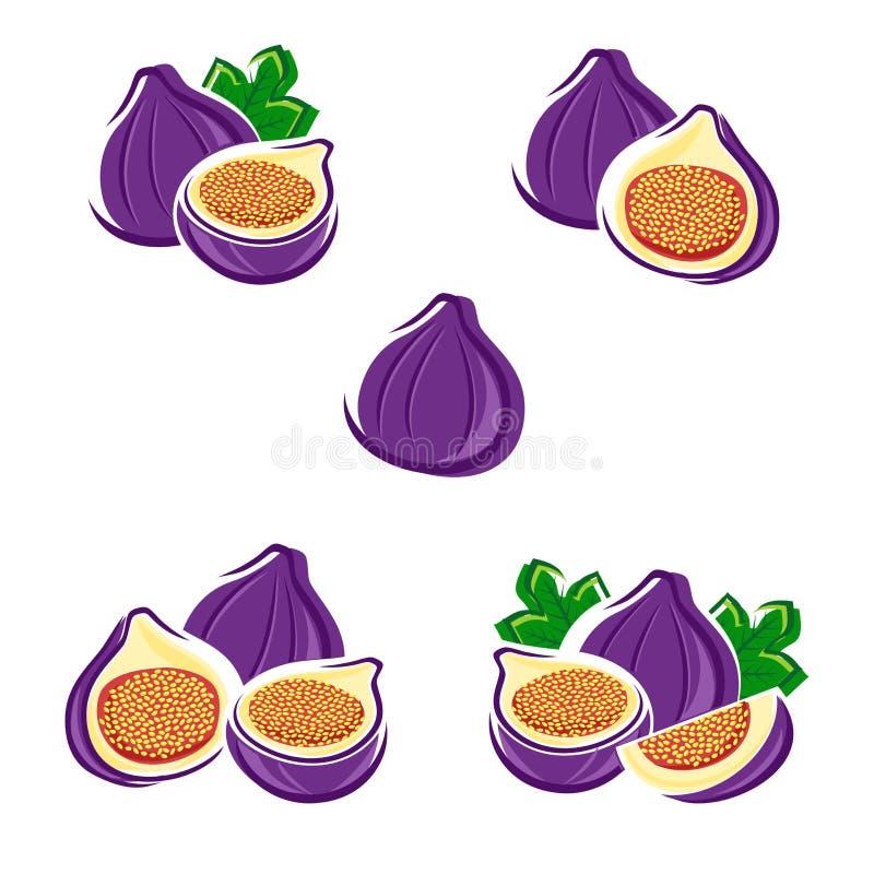 Figos ajustados Vetor ilustração stock