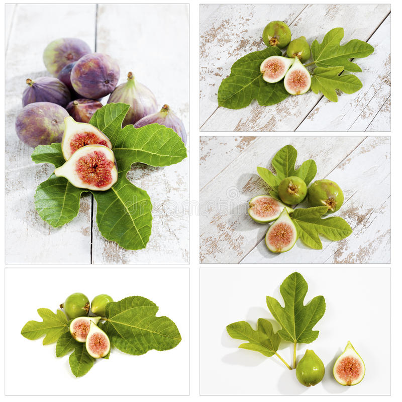 Figos frescos com folhas, colagem fotografia de stock