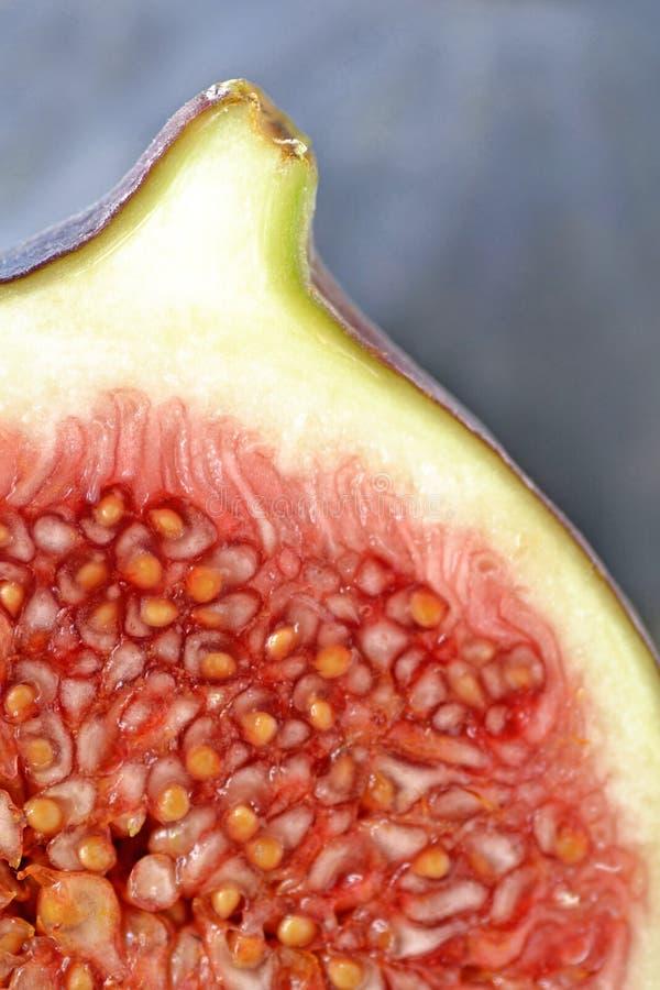 Figos frescos macro fotografia de stock royalty free