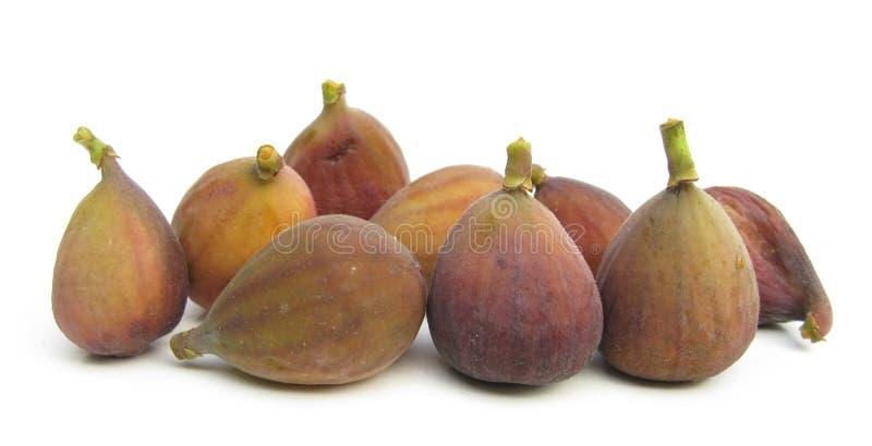 Figos maduros isolados no branco fotografia de stock