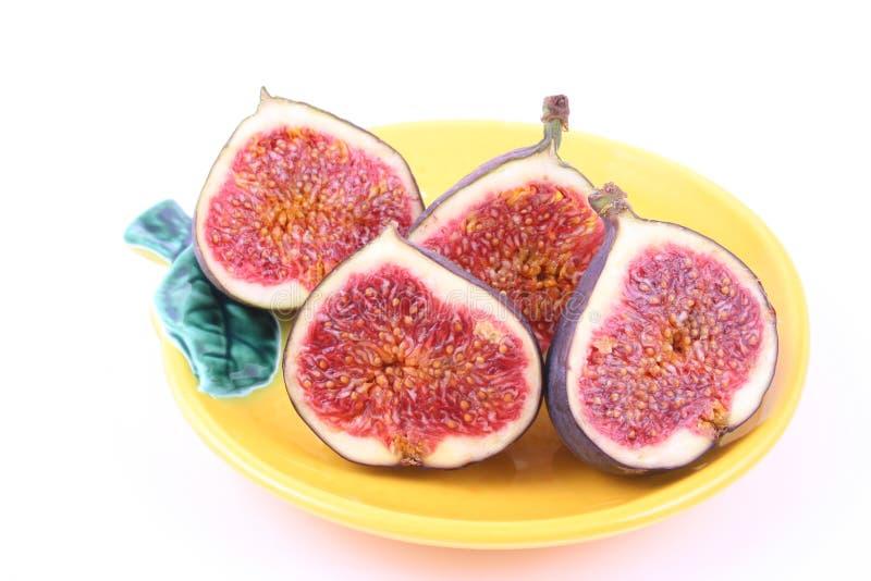 figs arkivbilder