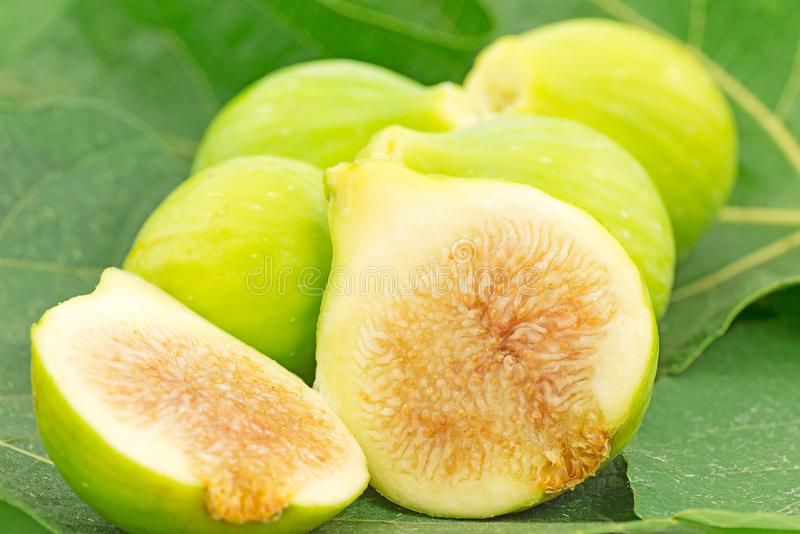 Download Figs stock photo. Image of group, agriculture, dessert - 26020040