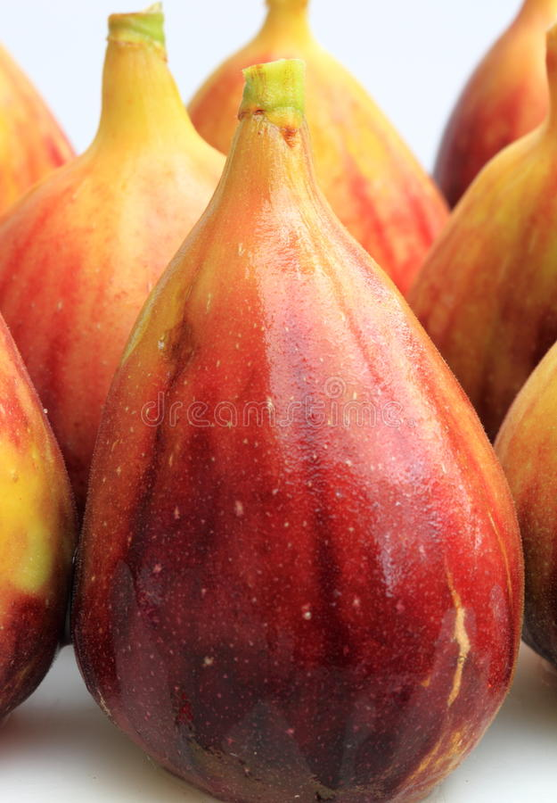 Figs close up stock image