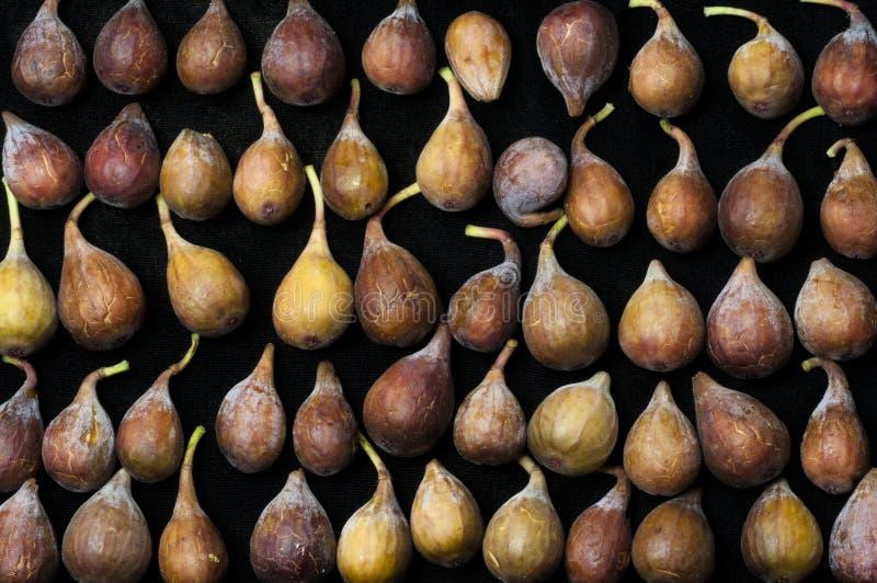 Figs i en rad arkivbilder