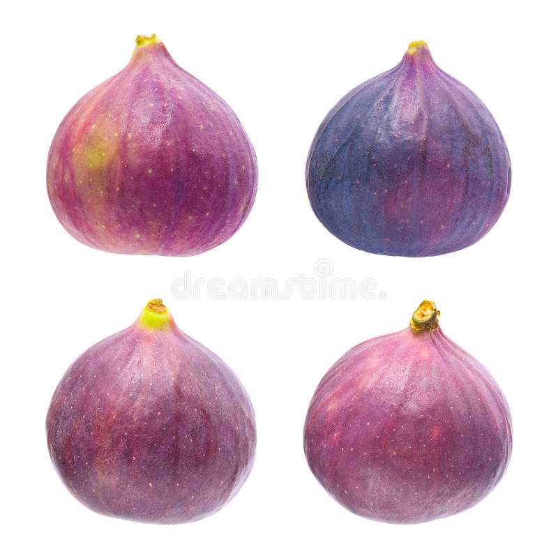Figs isolated. Four figs isolated on a white background stock image