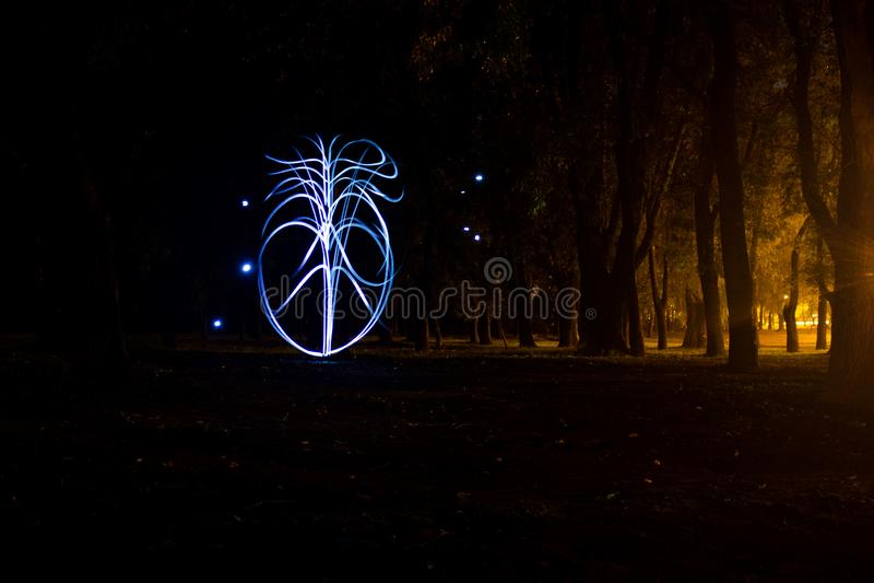 Figura abstrata da pintura clara na forma do coração da floresta feita com luz na noite imagem de stock