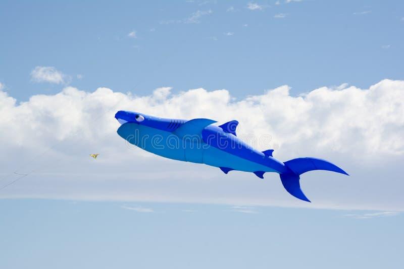 Figura afiada de voo papagaio em Adelaide International Kite Fest fotos de stock
