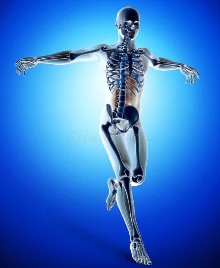 figura 3d médica em saltar a pose ativa ilustração stock