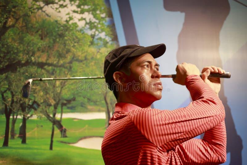 Figura de cera do jogador de golfe americano Tiger Woods fotos de stock