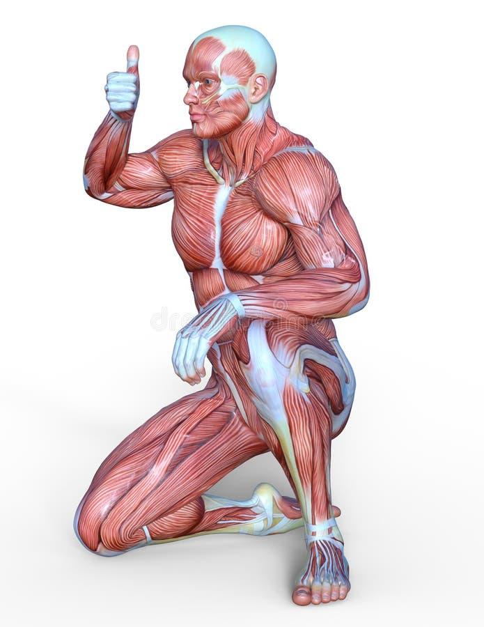 Figura de endecha masculina stock de ilustración
