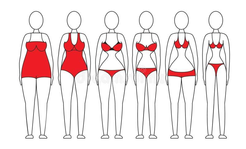 Figura de las mujeres stock de ilustración