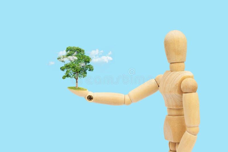 Figura de madeira manequim que guarda a árvore verde e a nuvem branca à disposição imagem de stock royalty free