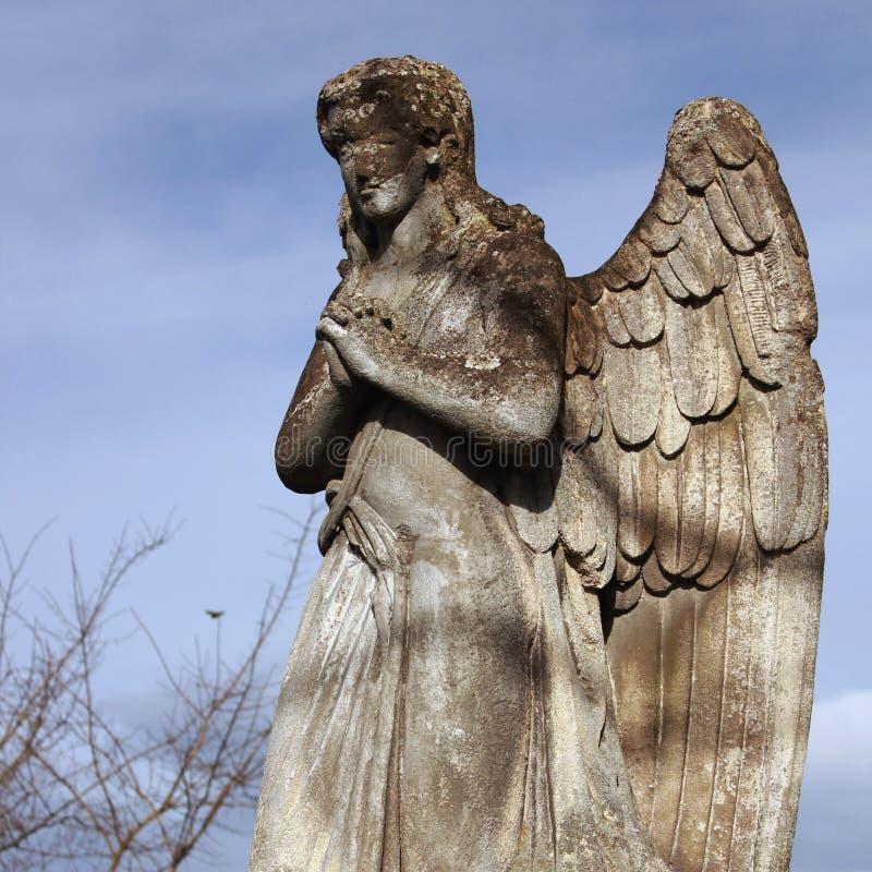 Figura de um anjo praying foto de stock