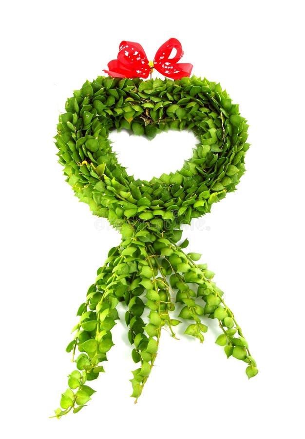 Figura del cuore dai fogli verdi fotografia stock libera da diritti